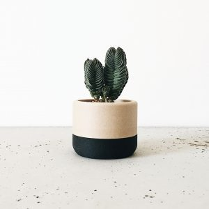 Vase ecotools de chez minimum design, Cache pot Made in France