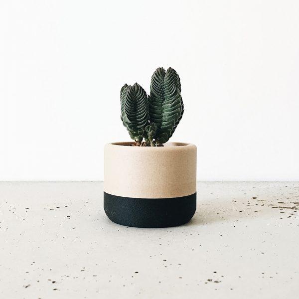 Cache pot minimaliste